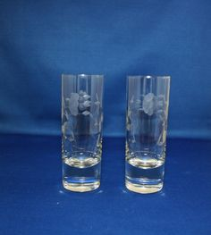 Vintage Unused set of 2 Princess House Heritage Crystal Tall Shot Glass pair… Princess House Crystal, Shot Glasses, Pressed Glass, Glass Collection, Cut Glass, Stoneware, Porcelain, Crystals, Cabinet