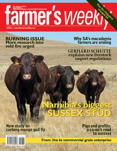 Get your digital subscription/issue of Farmer's August 2014 Magazine on Magzter and enjoy reading the magazine on iPad, iPhone, Android devices and the web. Agricultural Sector, August 2014, Magazine, Digital, Reading, Windows 8, Farmers, South Africa, Southern