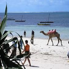 Horse & camel riding holidays in Gambia are a wonderful way of seeing the real Africa. Places To Travel, Places To Go, Riding Holiday, Guinea Bissau, African Safari, Beach Holiday, West Africa, Africa Travel, Sierra Leone
