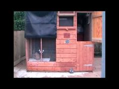 A Hutch Is Not Enough - Convert Your Garden Shed for Your Rabbit