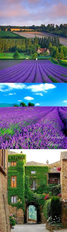 Provence , France  its amazing beauty and scenery. It is also famous for its nice selection of good food and wines. Cannes, the town in Provence, is also very popular for its film festival.