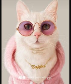 Top 25 Cats in Glasses - CLC 23 - - random - Big bear Cute Baby Cats, Cute Cats And Kittens, Cute Funny Animals, Cute Baby Animals, Cool Cats, Kittens Cutest, Funny Cats, Cute Cats Photos, Cute Animal Photos