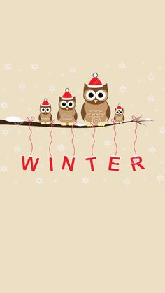 Christmas Background Owls Stock Photos, Images, & Pictures – Images) - Page 2 Christmas Phone Wallpaper, Holiday Wallpaper, Winter Iphone Wallpaper, Owl Wallpaper, Cellphone Wallpaper, Winter Background, Christmas Background, Christmas Mood, Christmas And New Year