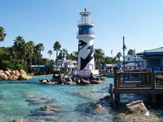 Sea World Orlando Florida - Bing Images Florida Sunshine, Sunshine State, Usa Places To Visit, Seaworld Orlando, Disney Planning, All I Ever Wanted, Honeymoons, Amusement Parks, Florida Travel
