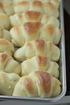 This is the world's best homemade rolls recipe also known as the best dang rolls we have ever shoved into our faces. They are awesome! The post Worlds BEST Homemade Rolls appeared first on Win Dessert. Best Homemade Rolls Recipe, Bread Recipes, Cooking Recipes, Basil Recipes, Yeast Bread, Bread Rolls, Dinner Rolls, Snacks, The Best