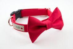 1 bow tie dog collar (1)