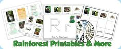 Rainforest Preschool Printables