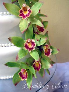 Green cymbidium orchid (with video tutorial)