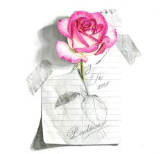 45 Beautiful Flower Drawings and Realistic Color Pencil Drawings Realistic Flower Drawing, Beautiful Flower Drawings, Pencil Drawings Of Flowers, Realistic Pencil Drawings, Pencil Drawing Tutorials, Pencil Art Drawings, Love Drawings, Drawing Tips, Easy Drawings
