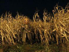 Pumpkinhead Scarecrow Costume