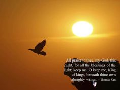 All praise to thee, my God, this night, for all the blessings of the light; keep me, O keep me, King of kings, beneath thine own almighty wings. ~ Thomas Ken