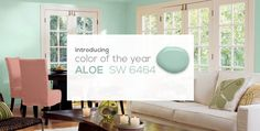 SW - 2013 Color Of The Year - Carousel Main
