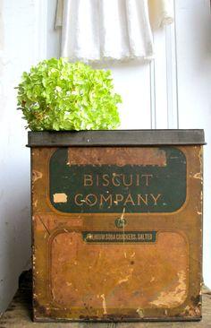 Antique Tin Biscuit Box Bread Box Biscuit Company Tin Box General Store Rustic Farmhouse cottage primitive home decor collectable Vintage Bread Boxes, Vintage Tins, Soda Crackers, Picnic Baskets, Old Boxes, Metal Tins, General Store, Sweet Memories, Primitives