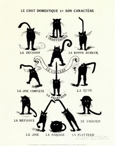 French Caractere (Le Chat Domestique) Stampa artistica