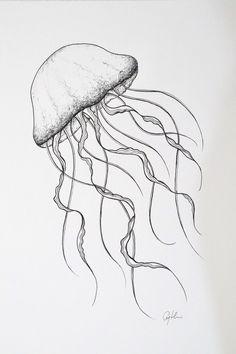 minimal jellyfish drawing, fine line artwork, ocean life by First Light Art Jellyfish Art, Sketches, Line Art Drawings, Art Drawings, Fish Drawings, Drawings, Seashell Drawing, Ocean Artwork, Art