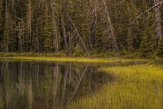 On this day there were nice reflections at Joffre lake near Pemberton and Whistler, BC,Canada Joffre Lake, Sunset Point, Whistler, Country Roads, Early Morning, Nice, World, Lakes, Prints
