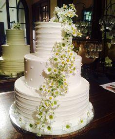 Beautiful wedding cake with chamomile flowers #weddingcake