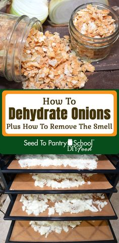 Step by step directions on how to dehydrate onions, plus the secret to getting the onion smell out of your dehydrator. Dehydrated Vegetables, Dehydrated Onions, Dehydrated Food, Veggies, Carrot Recipes, Onion Recipes, Dehydrator Recipes, Food Processor Recipes, Freezing Onions