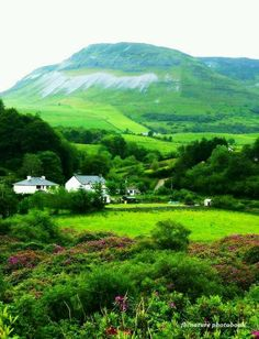 Ireland: who wouldn't love to live here?