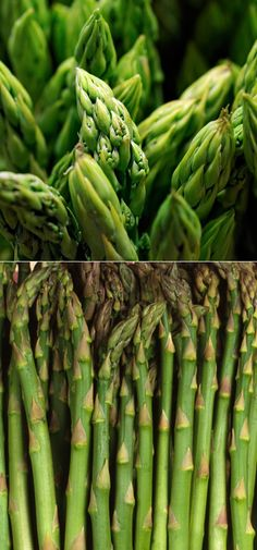 How to Grow Asparagus When to Plant : Plant The crowns in early-mid spring, as soon as the soil can be worked. Keep the asparagus patch free of.