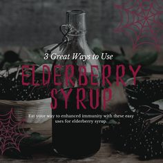 Amazing Elderberry Properties - Food and Recipes Elderberry is incredibly effective for boosting immunity and shortening the duration of colds and flus. Learn more about the history and uses of this ancient herb. Elderberry Plant, Elderberry Recipes, Elderberry Syrup, Raspberries, Blueberries, Picture Printer, Sparkling Lemonade, Garlic Seeds, Elderflower Cordial