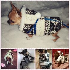 Winter Warm Pet Clothes Cozy Snowflake Dog Costume Clothing Jackets Teddy Hoodie Coats