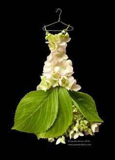 cream hydrangea dress - Sandra Alcorn