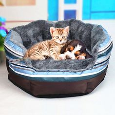 Cheap house bed, Buy Quality bed for puppy directly from China dog house bed Suppliers: Pet Products Dogs House Beds For Puppy Large Dog Warm Cotton Bed Mat House For Animal Cat Bed Sofa Sleeping Kennel Nest Dog Beds For Small Dogs, Large Dogs, Dog House Bed, House Beds, Plush Dog Bed, Winter Cat, Dog Wash, Sleeping Dogs, Pet Beds