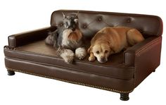 Enchanted Home Pet Library Sofa -- Details can be found by clicking on the image. (This is an affiliate link) #DogBeds