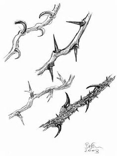 Free clipart images, Crown of thorns and Clipart images on Pinterest