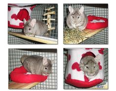 Adorable chinchilla fleece accessories set from Fuzzies Kingdom.