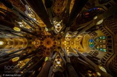 Look up by MariusNovac check out more here https://cleaningexec.com