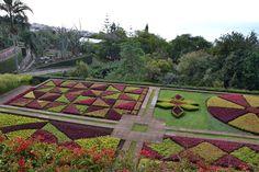 Reissaajan muistot: Botanical Garden ja Rua de Santa Maria