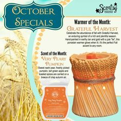 https://trishmorton.scentsy.us/ October warmer and scent of the month.