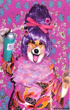 """Tired of silly makeovers? Miss Corgi says, """"Why mess with perfection?"""" Don't change a thing about you. Baby, you're simply fabulous! Your friend will love you. This ridiculously funny birthday card was inspired by the Broadway Show, """"Hairspray!"""" And this beautiful card features a distinctive handmade touch--from sparkles to ribbons!  https://www.etsy.com/listing/154350178/happy-birthday-dog-card-there-is-no-such?ref=shop_home_feat"""