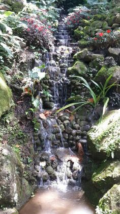 Sarchi-Costa Rica