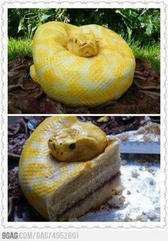 No way! Really does look like a snake. Snake cake! :)   I love cake, but would not eat it!  lol