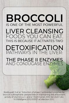 Broccoli is one of the most powerful liver cleansing foods you can eat. This is because it activates two detoxification pathways in the liver the phase II enzymes and conjugase enzymes. What's your favorite recipe for broccoli? Natural Liver Cleanse, Natural Liver Detox, Cleanse Your Liver, Detox Cleanse Drink, Liver Detox Cleanse, Detox Diet Plan, Digestive Detox, Detox Tips, Detox Recipes