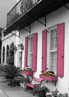 Pink shutters color splash