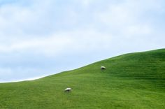 Emerald Hills by M