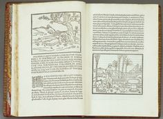Attributed to Francesco Colonna (1432-33-c. 1527), Hypnerotomachia Poliphili, 1499, 8vo : π4 a-y8 z10 A-E8 F4 (C1 signed E1) [242 leaves]; RCIN 1057947. Royal Collection Trust / © Her Majesty Queen Elizabeth II 2016