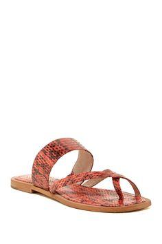2769ae762fd652 Getting these Louise et Cie Footwear Havana Amyas Sandals