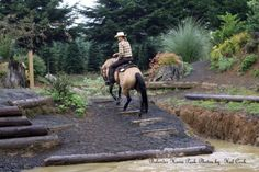 ... Bolender Extreme Trail. Awesome Horse Paddock, Parks, Trail, Paradise, Tomatoes, Park, Heaven