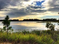 Sunset at Hardee Lakes