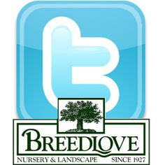 Have you added us, Breedlove Nursery & Landscape, on twitter? Be sure and add us on twitter:  twitter ID: breedlovelands https://twitter.com/breedlovelands  #breedlovelandscape #tyler #tylertexas #tylertx #landscaping #landscape #architecture #landscapearchitecture #nursery