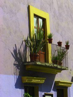 Plantas y mucho color para los exteriores.