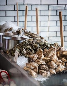 Best Oyster Bars in America: Where to Find the Best Raw Oysters - Thrillist Nashville Restaurants Best, Best Mexican Restaurants, Best Oysters, Raw Oysters, Oyster Happy Hour, Savannah, Oyster Recipes, Bar Displays, Raw Bars