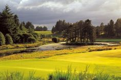 Golf Course The Queens Course in Scotland, United Kingdom - From Golf Escapes