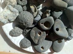 Hagstone Collection, Seneca Lake. We call them lucky stones and turtle backs.