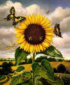 Sunflower by Teresa Fasolino Sunflower Garden, Sunflower Art, Sunflower Tattoos, Sunflower Paintings, Happy Flowers, Beautiful Flowers, Sun Flowers, Sunflowers And Daisies, Sunflower Pictures